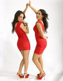 Nikki & Brie Bella  - Double Trouble