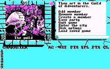 Bard's Tale II: The Destiny Knight ,the